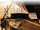 音楽の森 音楽の森について トップページ